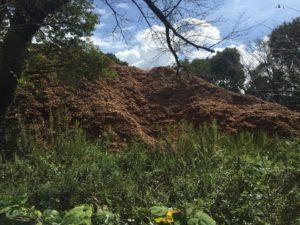 これが粉砕された木材の山